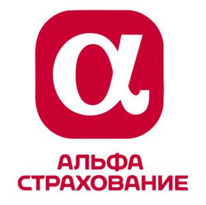 visa partners